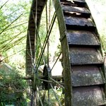 Arnos Vale Waterwheel and Nature Park Photo