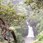 Puohokamoa Falls Photo