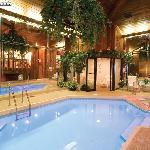 CHALET SWIMMING POOL SUITE