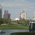 Dubai Desert Classic 2011