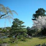 Shurakuen Garden
