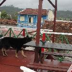 Photo de Casa de Alfredo
