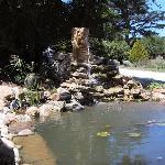 Bassin à poissons aux Cèdres de Lescaillé