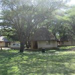 Letaba Rest Camp Cottage