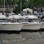 Lake Michigans #1 port For Salmon Fishing!