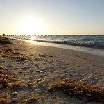 Los atardeceres en la Playa de Progreso son espectaculares.