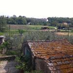 Agriturismo Il Piastrino