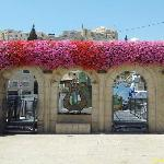 Main entrance to David's City