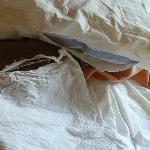 Nasty sheet and pillowcase