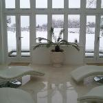 Looking out at the pool and vineyard from the solarium