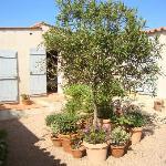 Photo of Villa Rach Gia