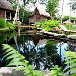 Bambu Indah Foto