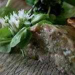 Wildly delicious terrine