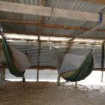 Hammock facilicies of Matapica