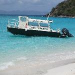 Dolphin Water Taxi - Day Trips