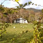a lamb's-eye-view of Melfort House