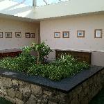 airy atrium