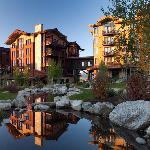Summer at Hotel Terra Jackson Hole
