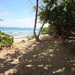 beach view from PauHana