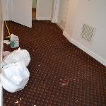 hallway - carpet stained