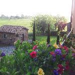 Il Castagno...aria di primavera...