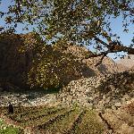 Anfli near Timichi