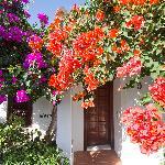 Set in the colourful gardens of La Concha