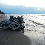 Driftwood on the beach of Lake Superior with the Porcupine Mountains in the distance to the left