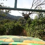 camino hacia el canopy, en el camión