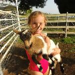 Lucy with one of the adorable baby goats