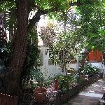 Patio de Las Acacias Malaga Hostel