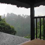 View from the room, during rain