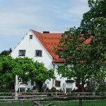Montfort Schlössle