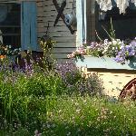 The Bright Morning Inn's flower and herb gardens