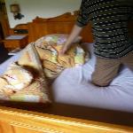 durchgelegene alte Matratze