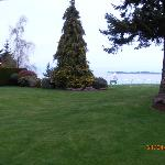 Pleasant garden area.
