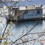 Just a stroll down the road - Houseboat on the Okanagan