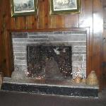 Bee hive neat old fireplace