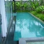 Lap pool runs along the side of the villa