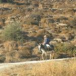 Hike from Drios to Lefkes