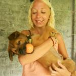 Puppy cuddles at koh lanta rescue centre