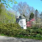 Old East Windmill