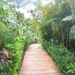 path to villa vista