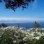 Strait of Juan de Fuca & San Juan Islands