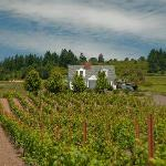 Thinking of spending a few days in wine country? Stay with us!