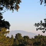 Vue du jardin sur le Mont Ventoux