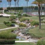 vista del jardín desde la terraza (con zoom)