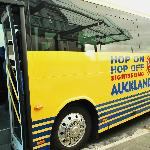 Hop On Hop Off Sightseeing Auckland Explorer