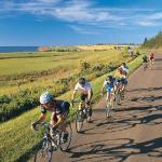 8 cycling and hiking trails within 5 minutes