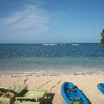 Beach, reef